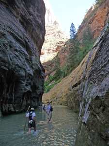 Wading the river The Narrows Zion