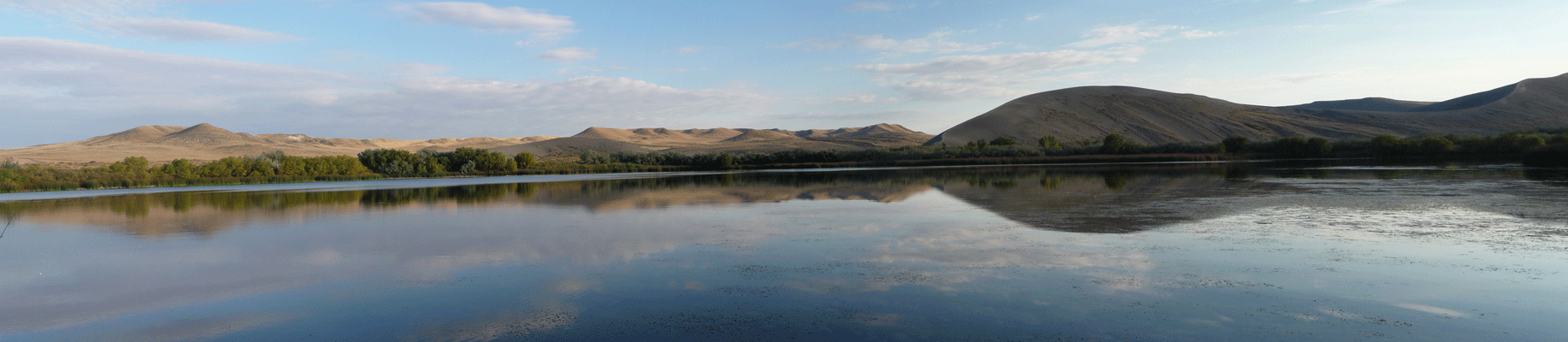 Bruneau Dunes Lake Panorama