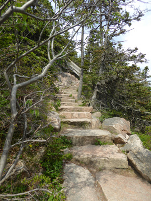 Stone stairs Bass Harbor Lighthouse trail