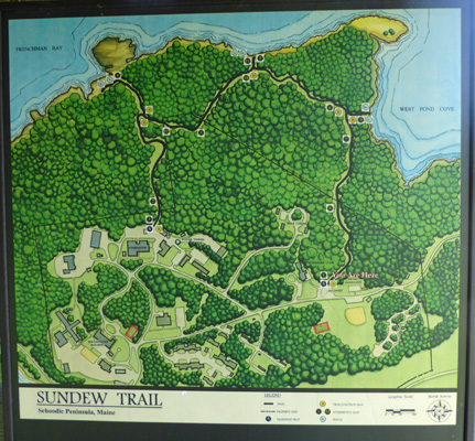 Sundew Trail map Schoodic Pen