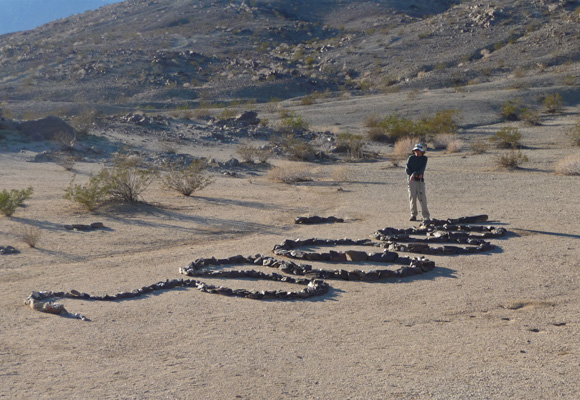 Walter Cooke and the great stone snake Anza Borrego