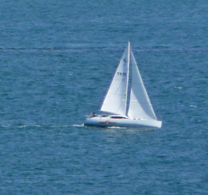 Sailboat in stiff breeze from Point Loma CA