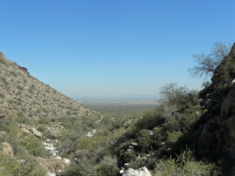 View eastward from White Tank Mountains