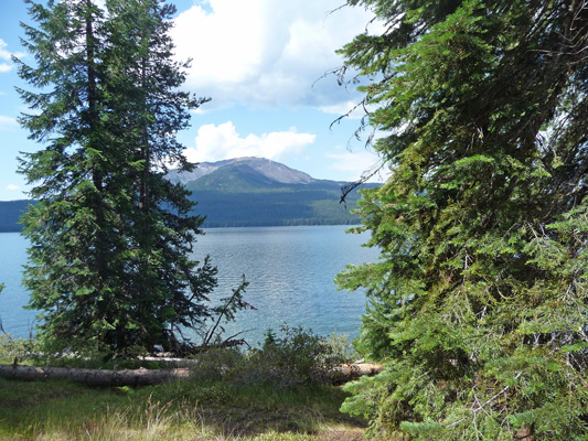Campsite view Diamond Lake Campground OR