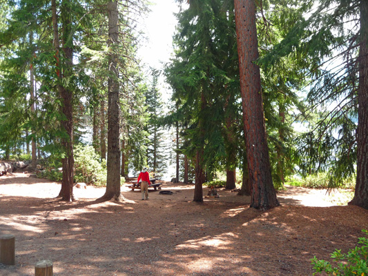 Campsite at Crescent Lake Campground OR