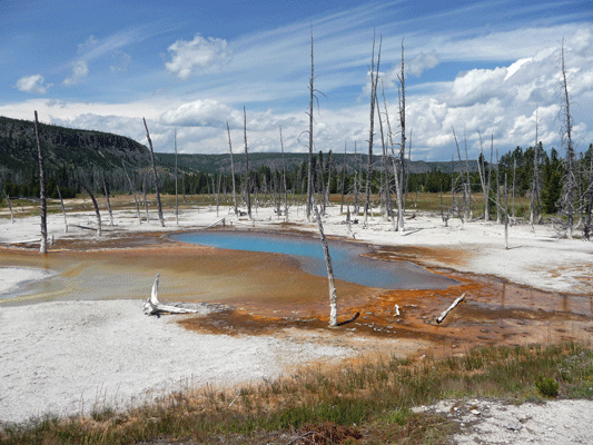 Opalescent pool Black Sand Basin Yellowstone
