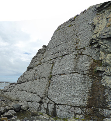 Conglomerate rock Green Point NL