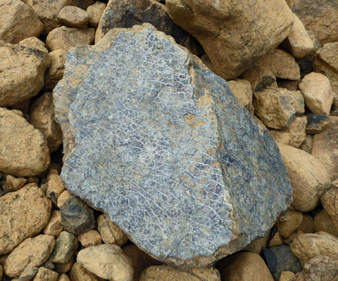 Serpentinite at Tablelands
