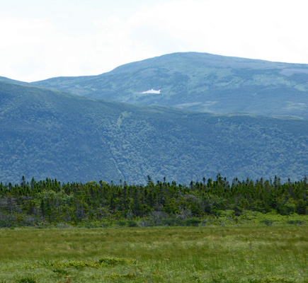 Patch of snow near Western Brook Pond