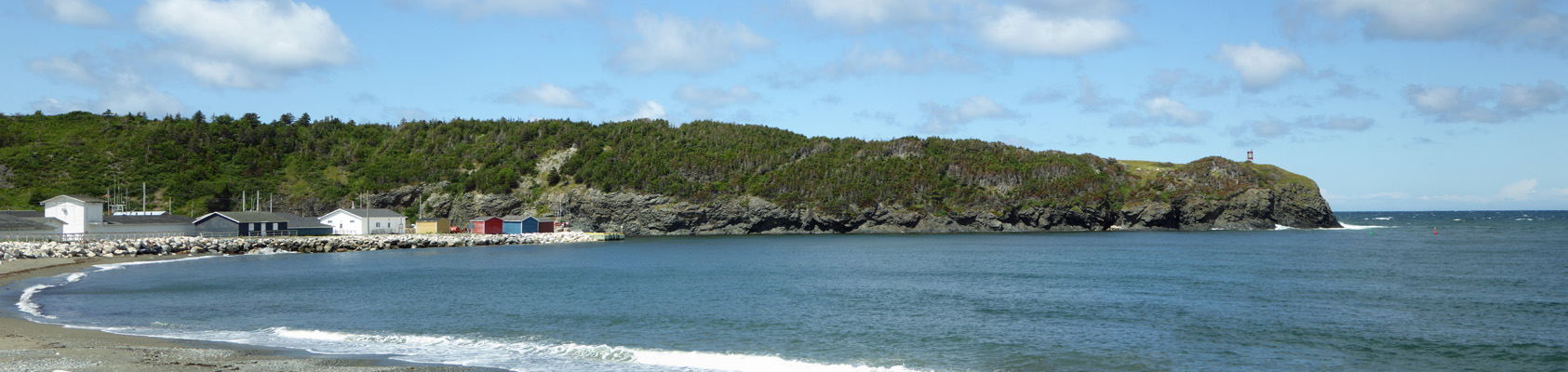 Trout River Cove NL