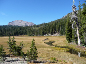 Kings Creek Meadow Lassen Volcanic National Park