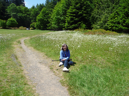 Sara Schurr and Oxeye Daisies Olympic National Park