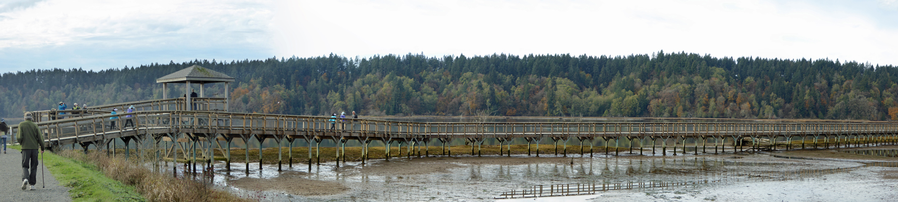 Observation tower boardwalk Nisqually