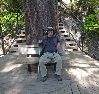 Walter Cooke at viewpoint of Toketee Falls OR
