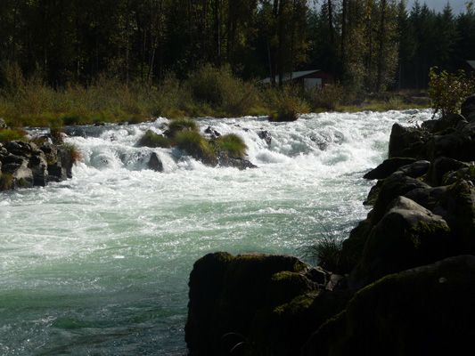 Falls on South Santiam River at Waterloo Park OR