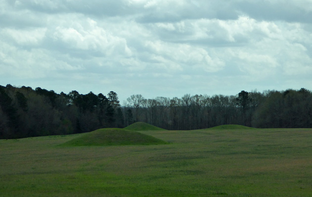 Pharr Mounds Natchez Trace MS