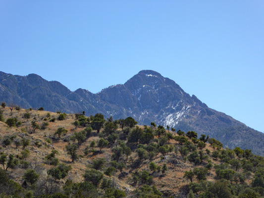 Madera Canyon mountain view with snow